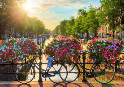 expat filing taxes in the netherlands