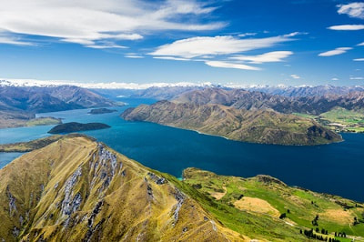 expat filing taxes in new zealand