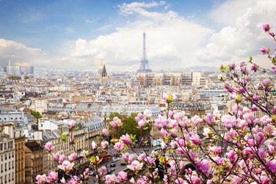 expat filing taxes in paris