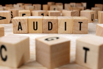 expat irs audit